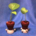 観葉植物と鉢